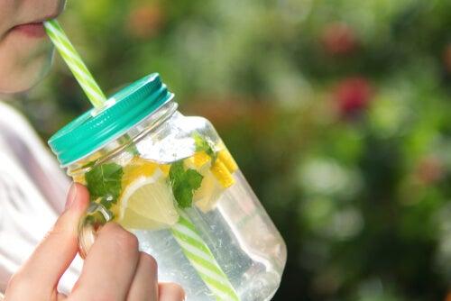 Una de las bebidas frutales más populares es el agua saborizada con rodajas de limón.
