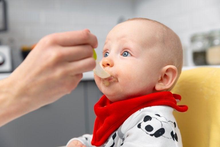 Pautas para introducir la alimentación complementaria