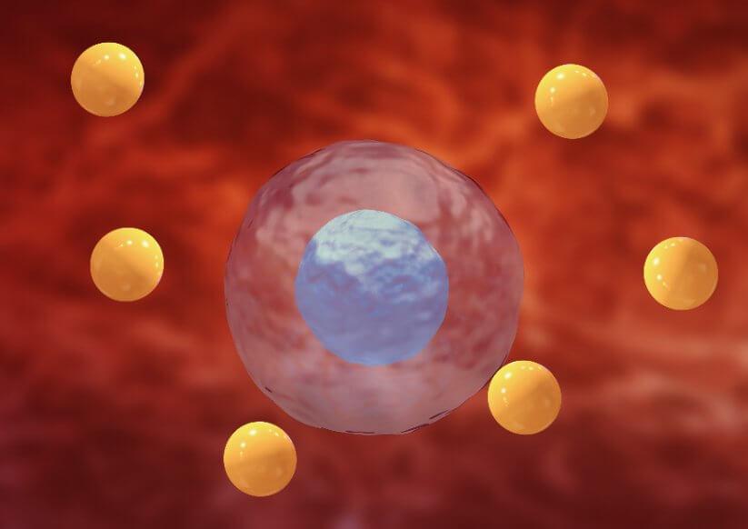 Estrés oxidativo, ¿en qué consiste?