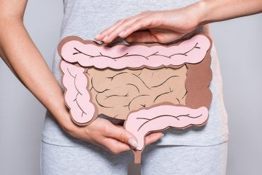 La microbiota intestinal