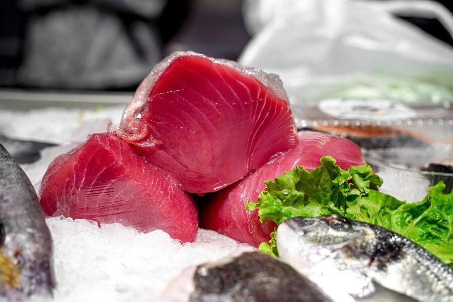 ¿Se puede comer atún crudo?