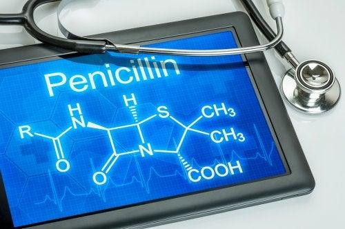 ¿Qué es y para qué sirve la penicilina?