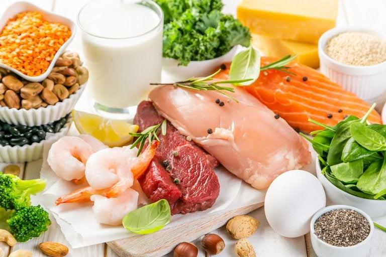 Tipos de proteínas y sus funciones