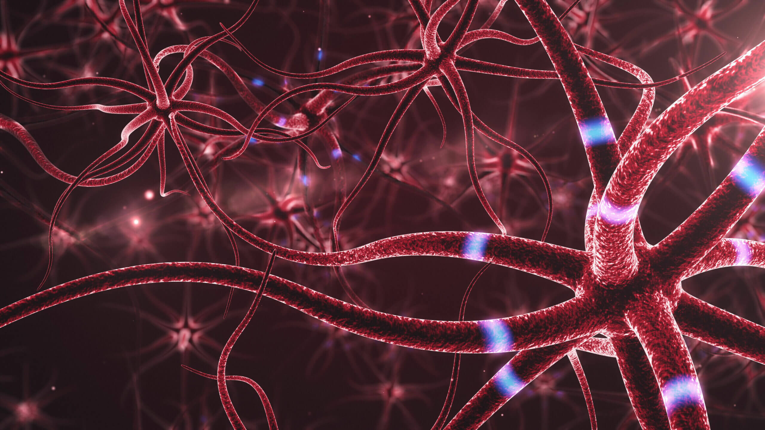 La respiración sobre el cerebro origina beneficios.