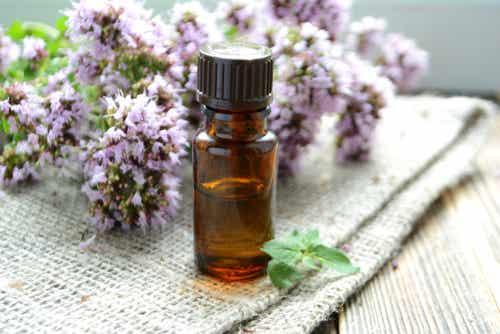Aceites esenciales para las patologías invernales