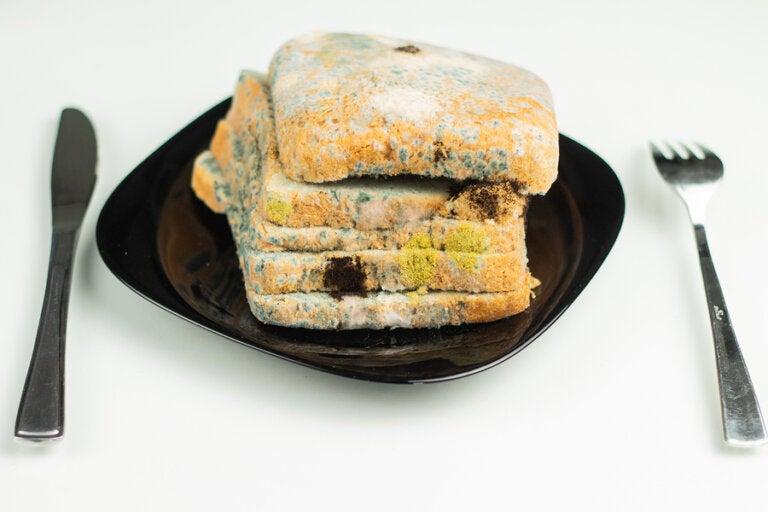 ¿Es peligroso retirar el moho de un alimento y comer el resto?
