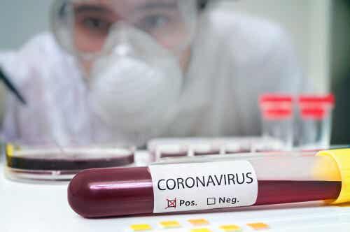 Infecciones por coronavirus: una alerta mundial