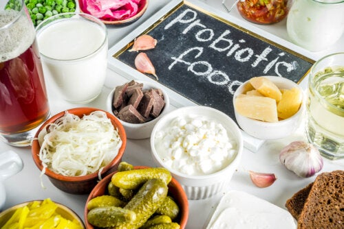 ¿Cuál es la diferencia entre prebióticos y probióticos?