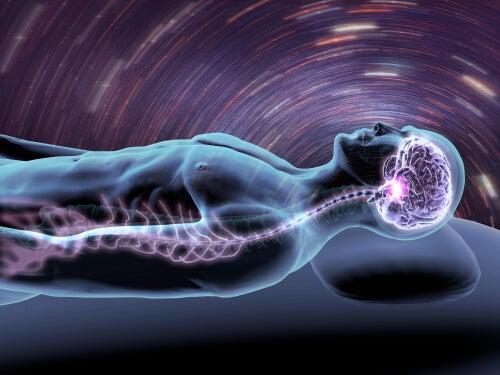 cerebro y sueño