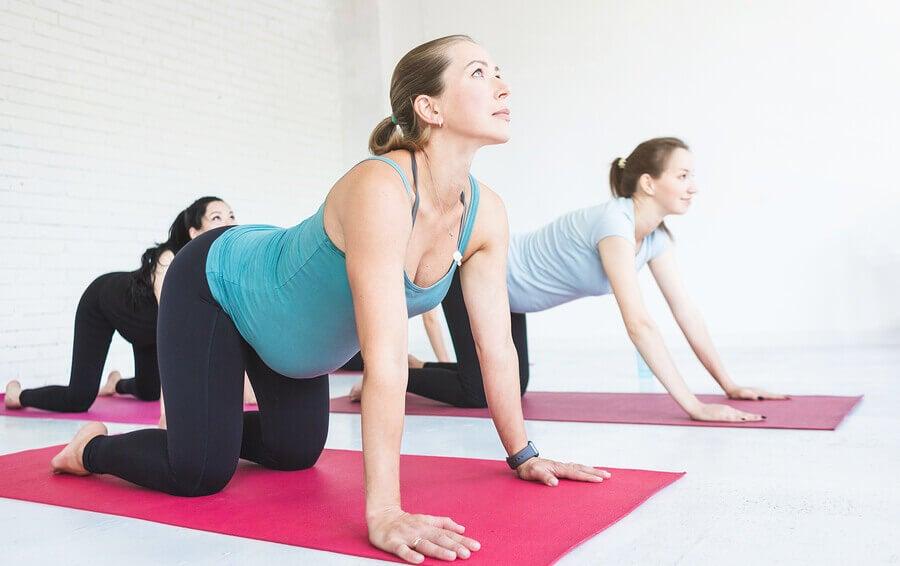 Consideraciones del ejercicio en el embarazo
