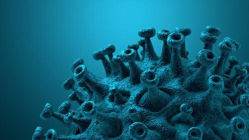 espículas del coronavirus