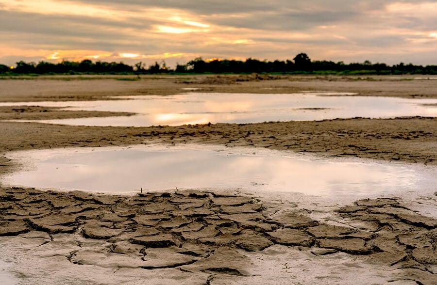 El cambio climático como problema de salud