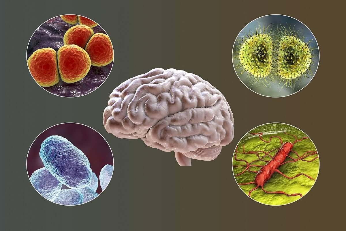 Día Mundial contra la Meningitis: una enfermedad que tiene vacuna