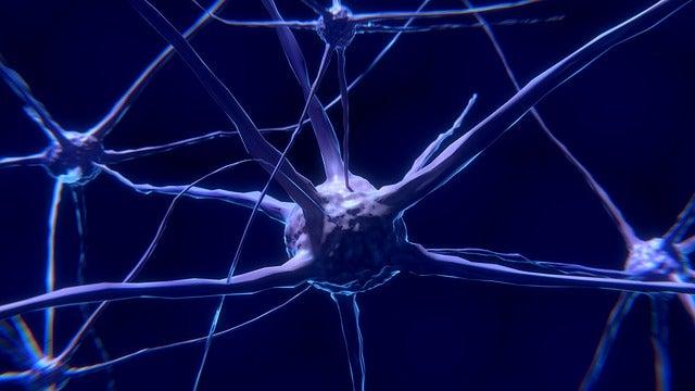 La falta de glucosa y las enfermedades neuromotoras