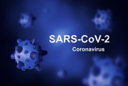 el origen del virus