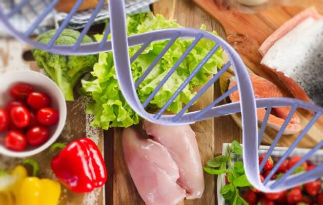 alimentación y genes
