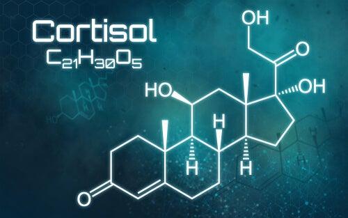 Exceso de cortisol: todo lo que debes saber