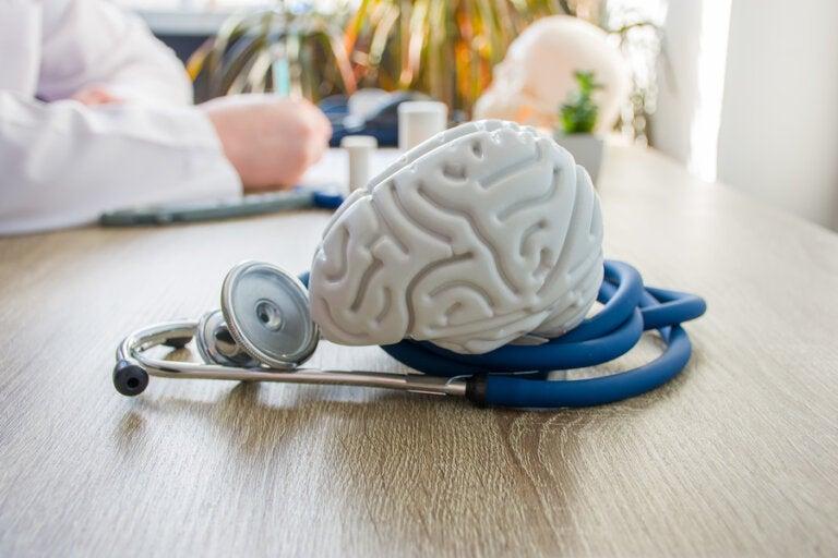 ¿Cómo afecta el gluten al cerebro?