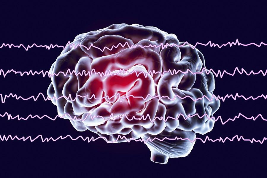 Ondas cerebrales y sueño REM