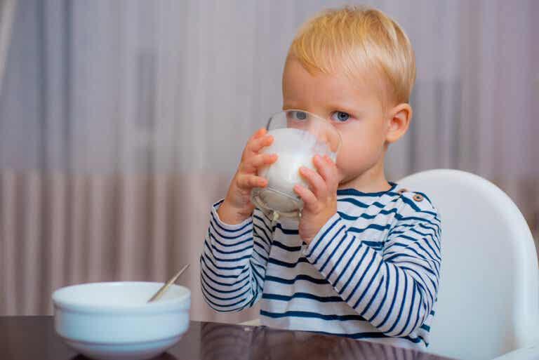 ¿Cuál es la mejor leche para niños después del año?