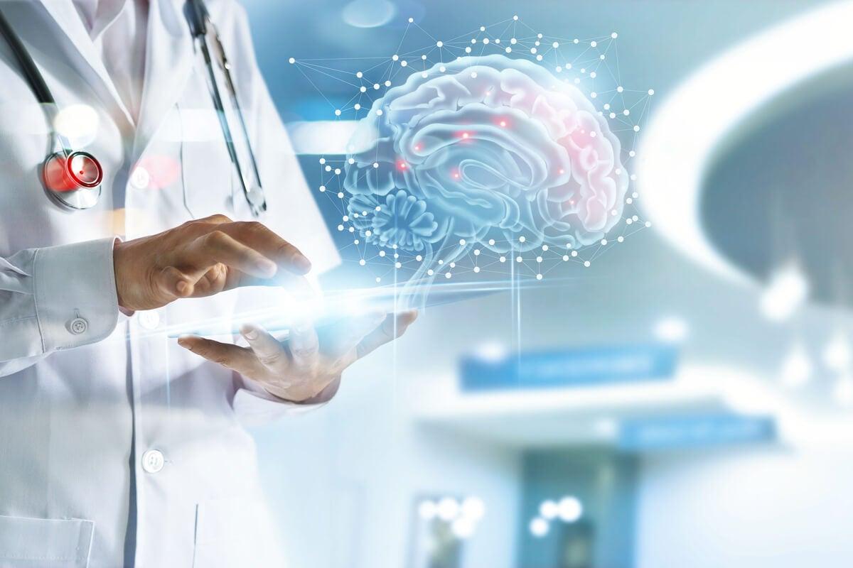 Médico analiza un cerebro