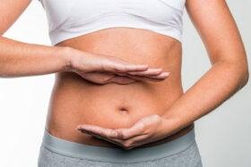 Dieta alta en grasas y riesgo de cáncer colorrectal