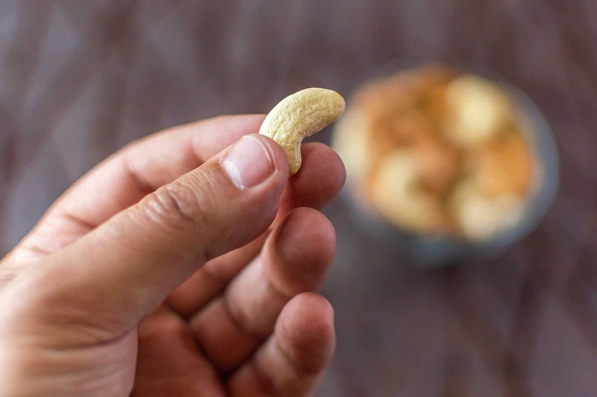 ¿Qué pasa con la grasa saturada de los anacardos?