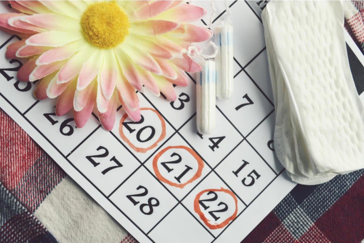 Ciclo menstrual para saber quedar en embarazo.