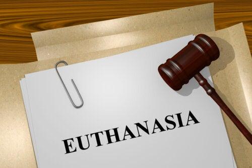 Tipos de eutanasia que debes conocer
