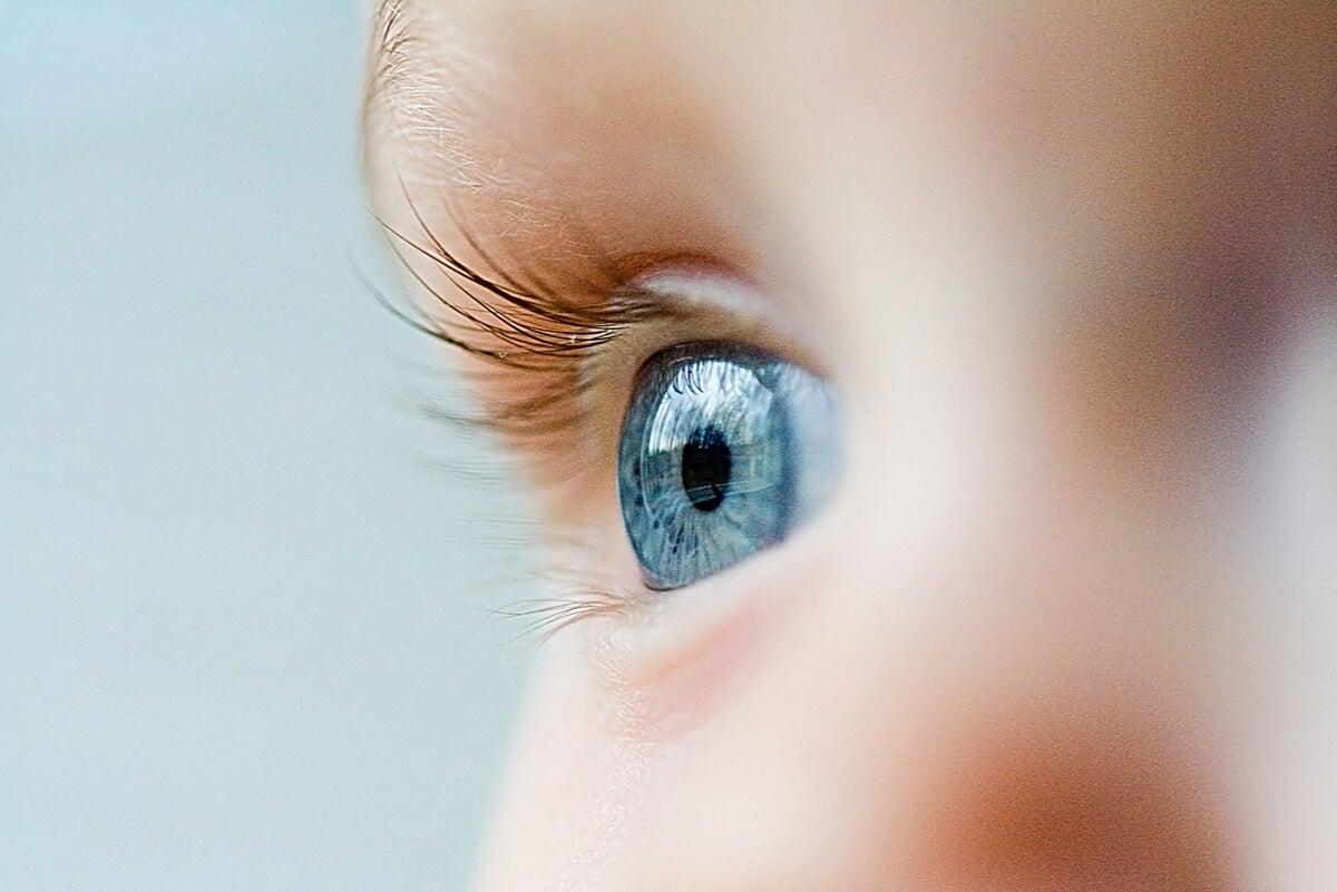 El ojo humano