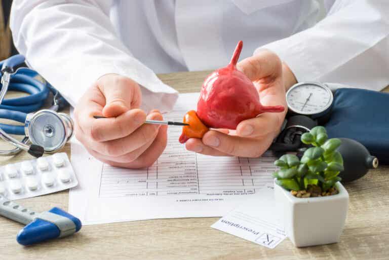 3 alimentos que ayudan a desinflamar la próstata