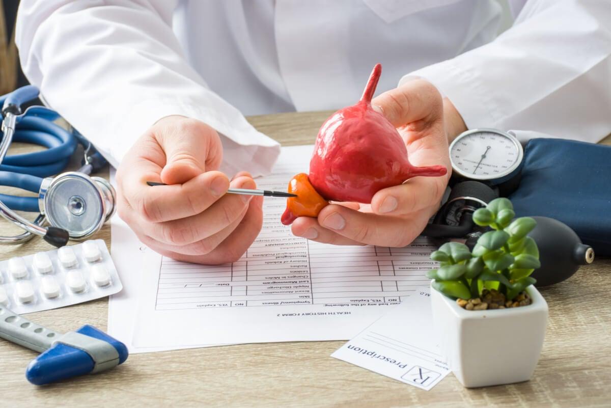 Médico señala la próstata.