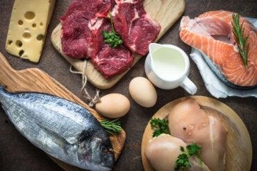 ¿Qué son las proteínas y para qué sirven?
