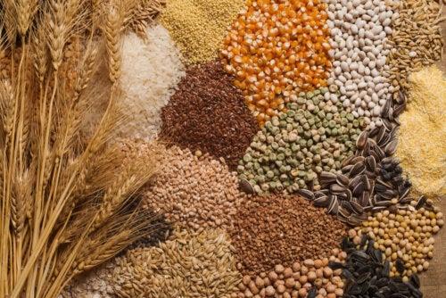3 consejos para incorporar semillas en tu dieta