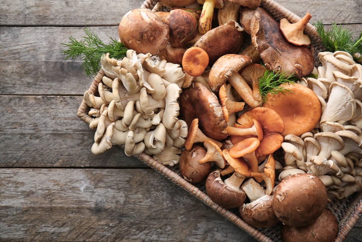 Setas y hongos bajos en calorías
