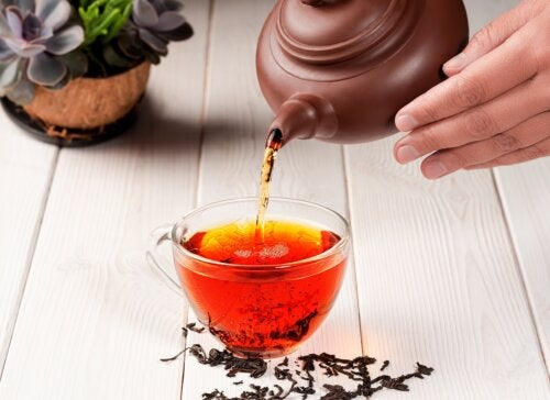 Té, infusión y tisana: ¿cuáles son sus diferencias?