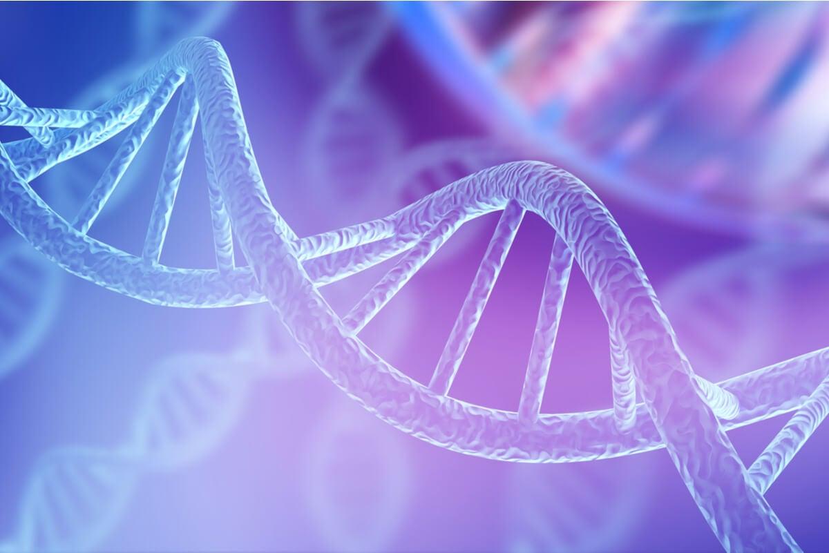 ADN en las enfermedades genéticas.