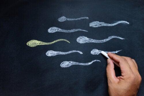 6 formas de aumentar la testosterona