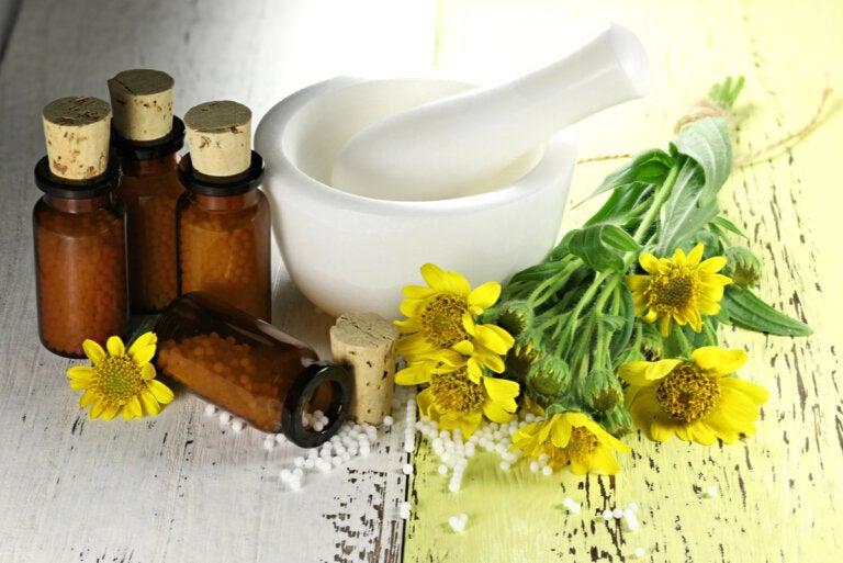 Árnica: beneficios, usos y contraindicaciones