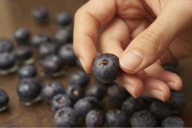 5 beneficios de los arándanos para la piel