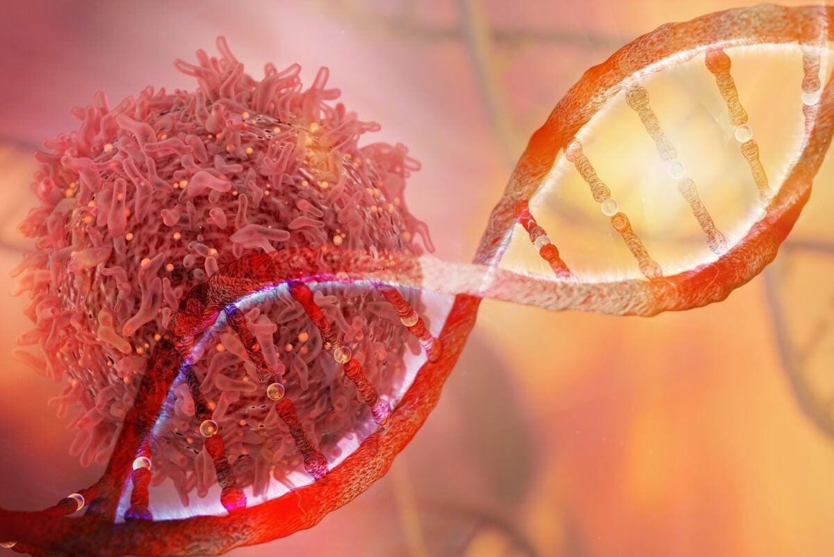 ADN en el lazo labial.