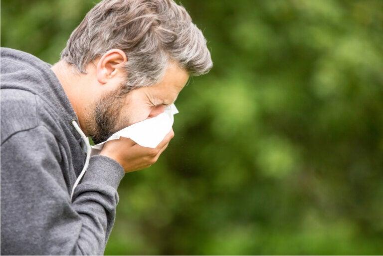 ¿Cuáles son las causas de la congestión nasal?