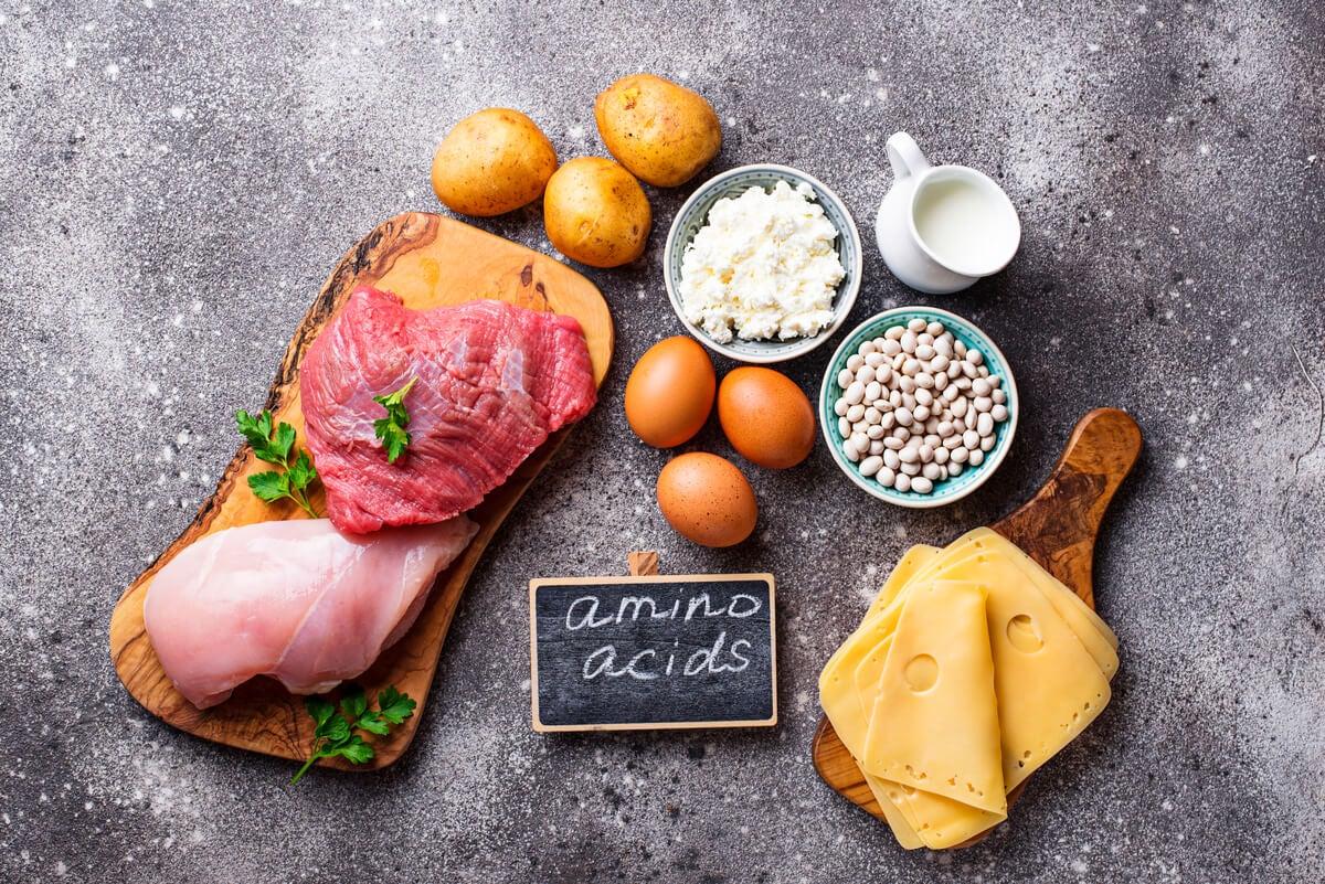 Tipos de aminoácidos, sus características y dónde encontrarlos