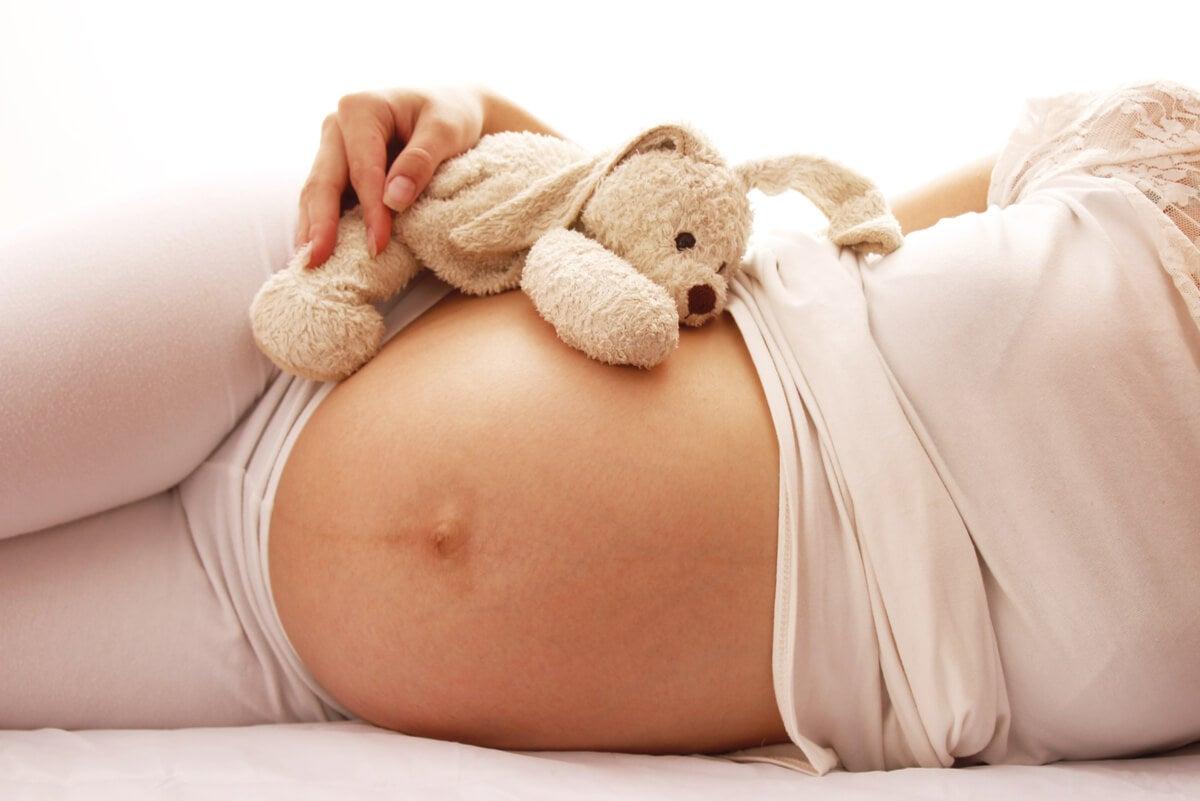 ¿Cuáles son las etapas del embarazo?