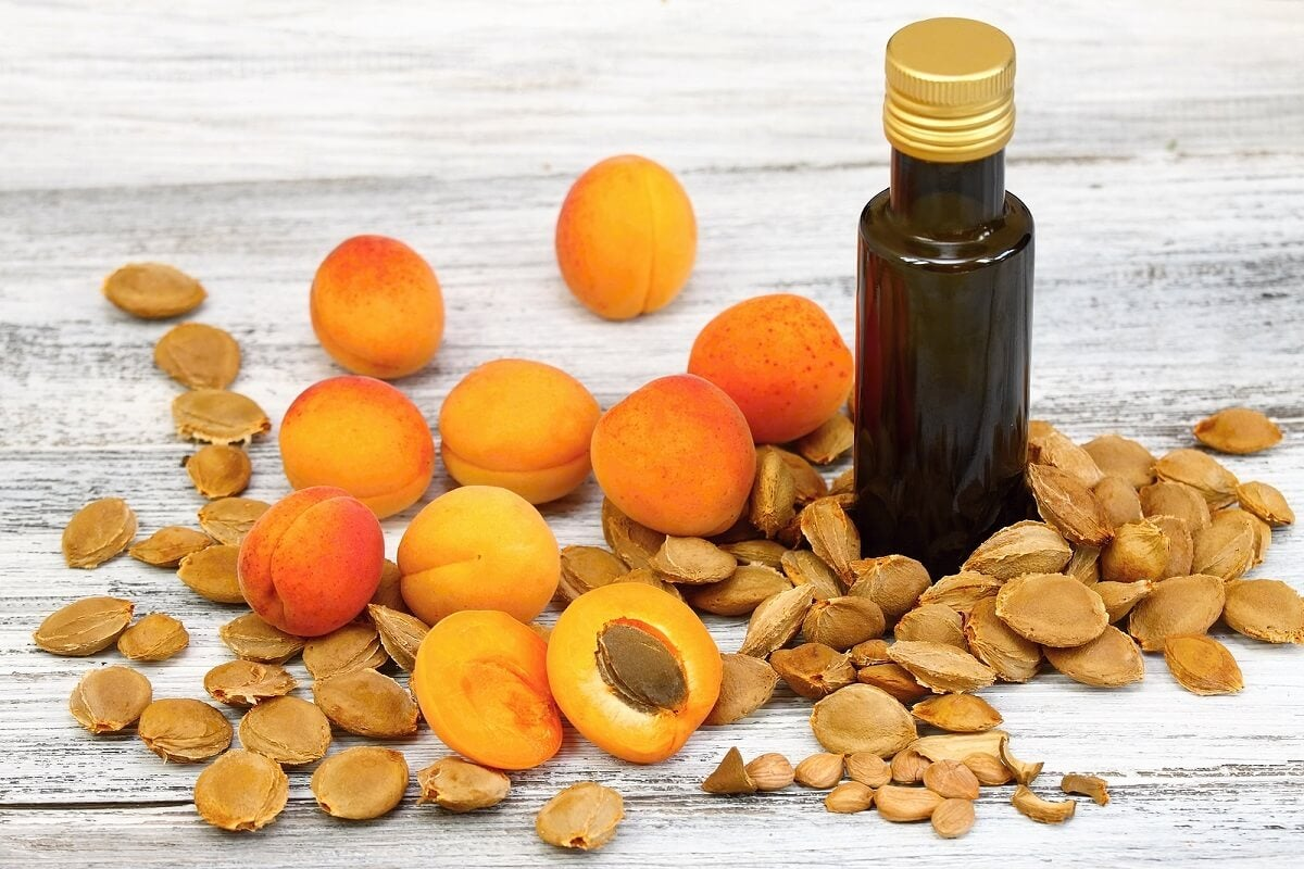 Studies related to apricot seeds