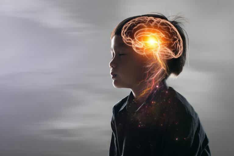 Lisencefalia: el cerebro liso