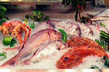 Razones para no consumir estas 5 clases de pescados