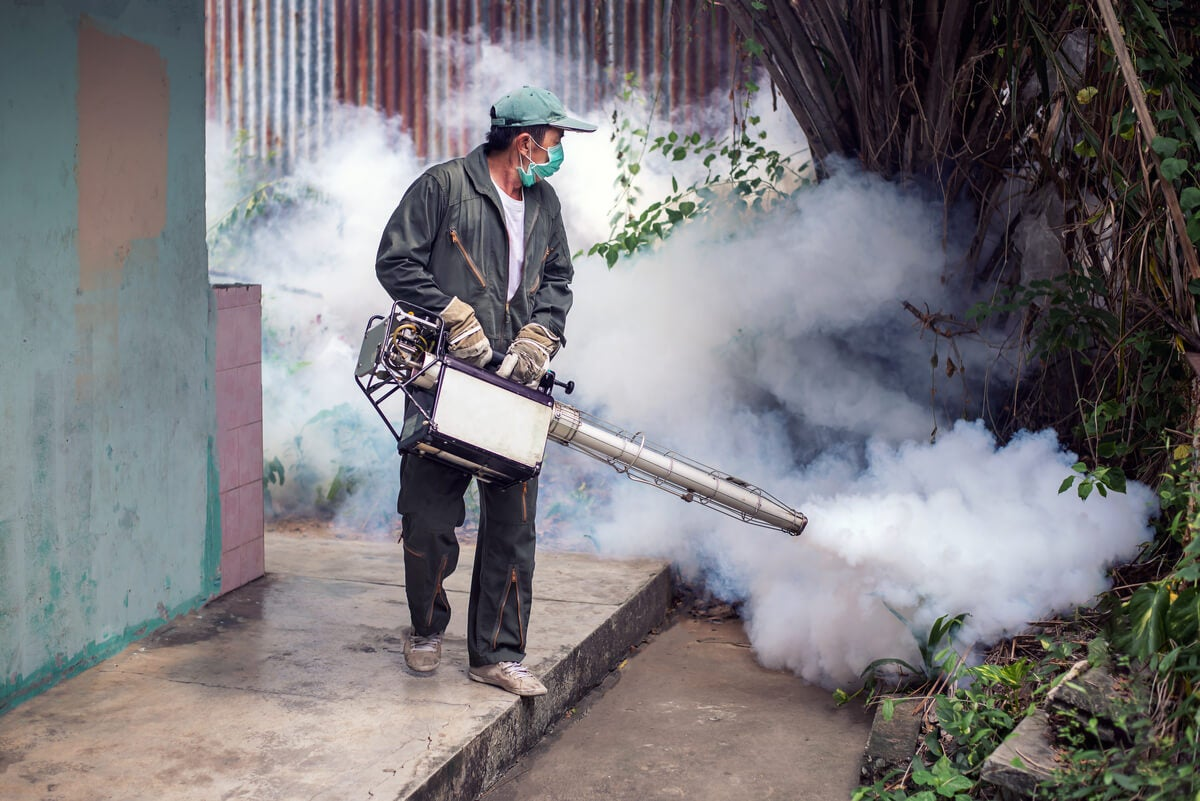 Fumigation in houses.