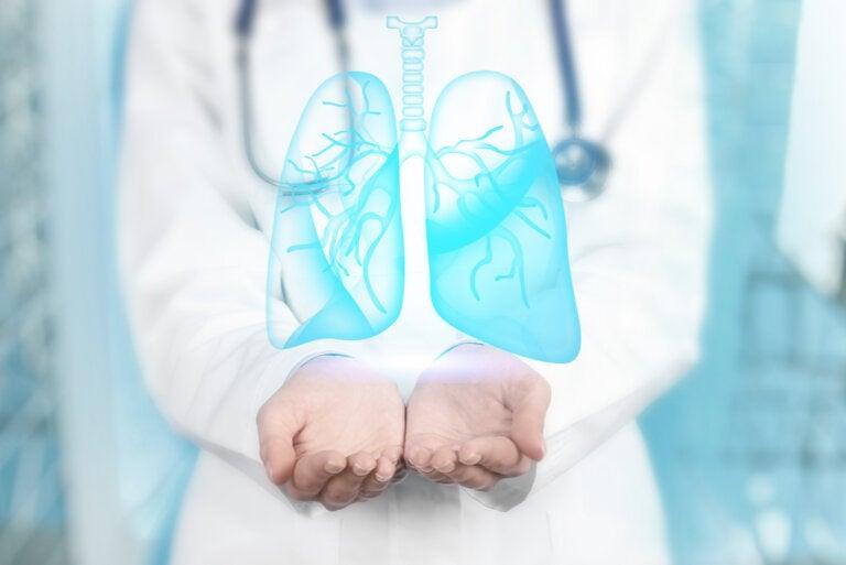 Bronquitis y bronquiolitis: ¿cuáles son sus diferencias?