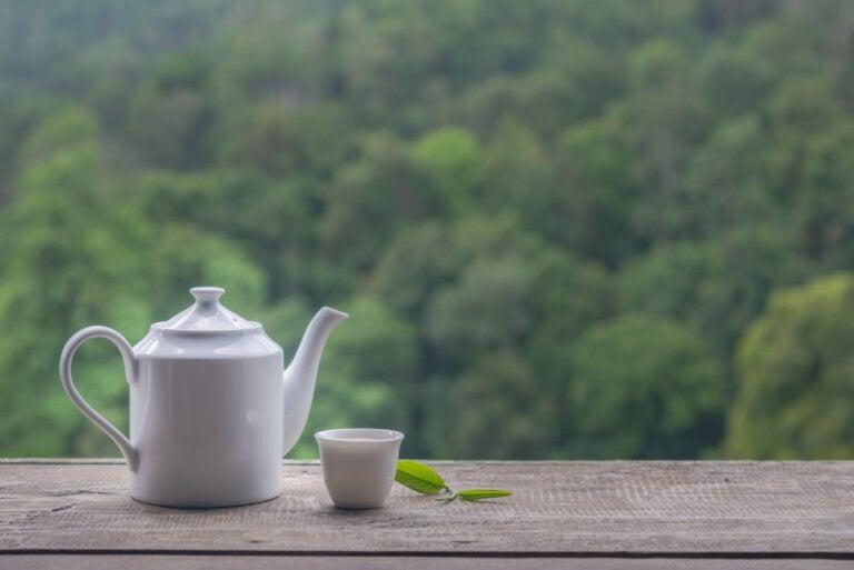¿Cuánta cafeína contiene el té blanco?